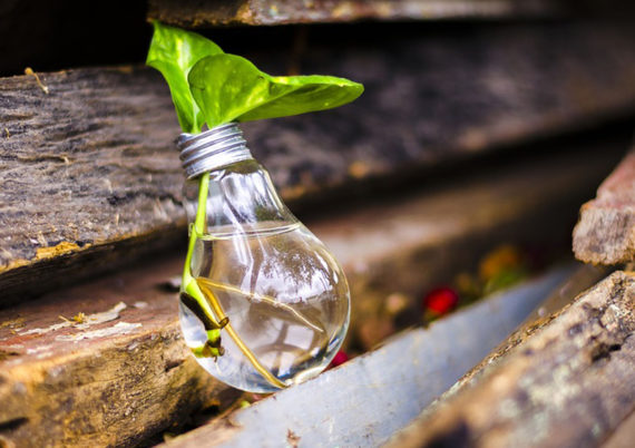 biodegradabile-ecosostenibile-biolaminil-laminil-isonova